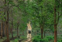 Sightseeing preview of Kabini Trip July 2015