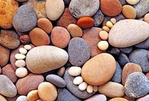 Pet rocks 2