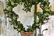 Topiary / umelecké tvarovanie kríkov