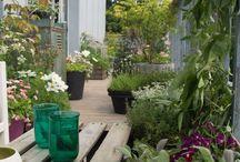 Hage, terrasse, balkong