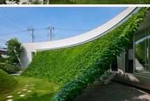 Zöldfalak, növényfuttatás