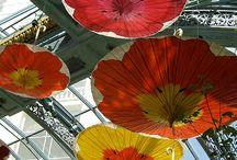 installation spring