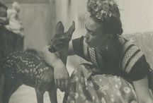 Frida and other loves
