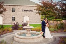Trione Weddings