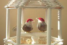huvimaja+linnut