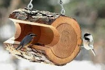 krmítka pro ptáčky