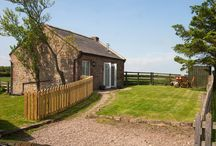 5 things we love about...The Forge / Romantic couple's retreat in Northumberland, The Forge