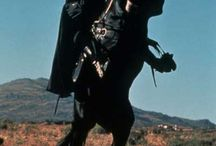 paard zorro