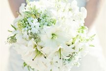 Wedding Stuff / by Kathee Bui