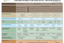 Holistic Land and Livestock Management