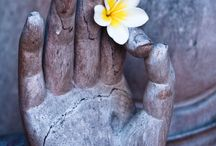 Heavenly Fragnipani & Lotus