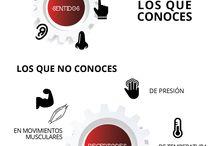 Infografías Vida Positiva / Infografías diseñadas para transmitir conceptos útiles sobre el cuerpo.