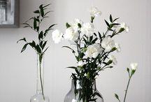 Dekorasyon Çiçek