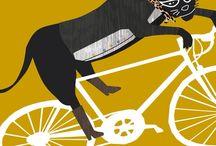 Convocatorias Ciclistas en Zaragoza