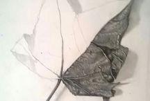 Draw & Sculpt