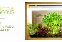 MyMicrogreens / Coltivatore indoor di microgreens