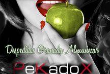 Despedidas Granada Almuñecar Sala Kamasutrax / Sala KamasutraX para despedidas de solteros y solteras en Granada Almuñecar es un local exclusivamente para celebraciones de grupos para despedidas de soltería, cumpleaños y eventos.