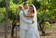 Italy Weddings in vineyards and olive groves  / In Italy vineyards are at their best in September, just before the harvest.  Grapes are dark purple, plump, and mmmmmm good! / by Bonnie Marie