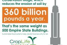 Agricultural Conservation