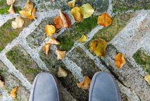 """AUTUMN - Autunno  www.ItaliaMarche.com / """"ITALIA MARCHE"""" Il Primo Portale dello Charme Made in Marche - Scatti fotografici autunnali. Fotografie soggette a © Copyright realizzate per mostre fotografiche."""