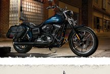 H-D Dyna Lowrider FXDL