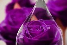 Магия фиолетового