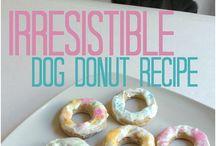 recetas para mascotas