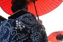 Japan the Unique