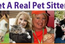 """""""Get A Real Pet Sitter"""" Campaign"""