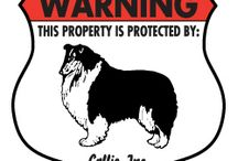 Collie Signs and Pictures / Warning and Caution Collie and Signs. https://www.signswithanattitude.com/collie-signs.html