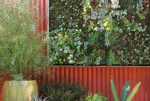 Garden / by Donna P