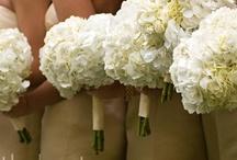 Wedding- White / by Sara Vega