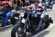 Harleysite #picoftheday #harley #harleydavidson #bikerbabe #fatboy #bikerchick #bikergirl #girl #harleysite