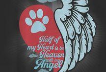 #Dog lover