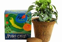Kit de siembra PURO CHILE