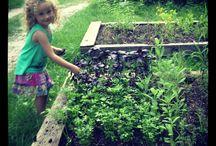 Kids Who Garden... Eat Vegetables