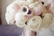 wedding flowers. / by Emma Griffin