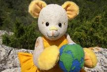 Miss Solar Bear