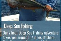 Deep Sea Fishing / Charter Boat (fishing and harbour cruises), Deep Sea Fishing, Harbour Cruises, Private Charters