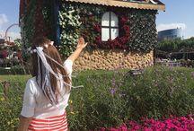 Miracle Garden