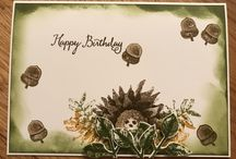 My stampin up cards