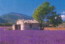 Provence, Prowansja