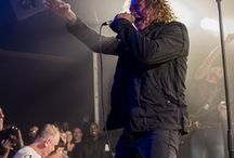 The screaming jets / I just love them