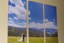 Wedding  / by Shannon Sorensen Williams
