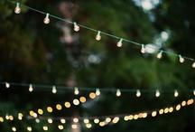 Backyard Beauty / by Rachel Folkers-Loomis