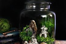 Do It Yourself Jar Garden And Light Projects