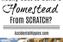 Frugal living & homestead financials