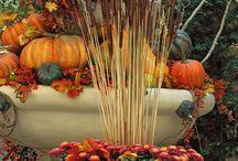Fall Gardening Ideas / Fall Gardening DIY Ideas and Inspiration