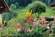 jardin montagne