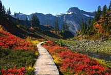Take a hike! (Thanks, Stacy ) / by Red Hen Home